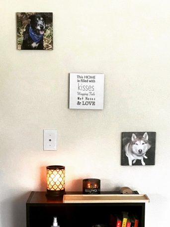 pet-photo-collage-canvases