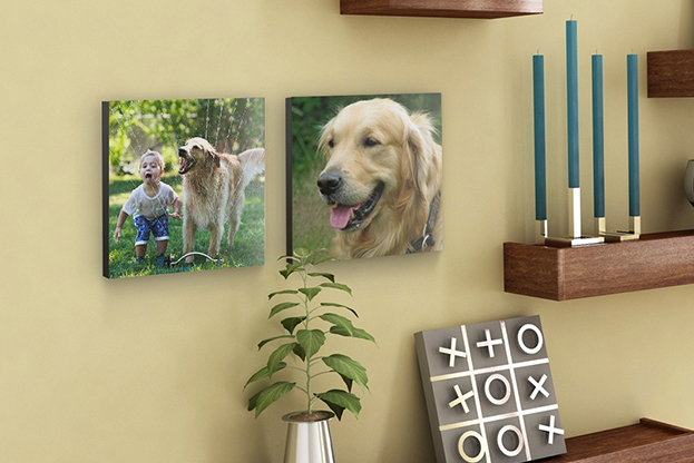 Photo tile wall decor - family pet photos
